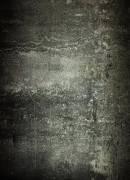 Fond en Tissu avec Motif photographique BRESSER BR-L655 1,8x2,5m